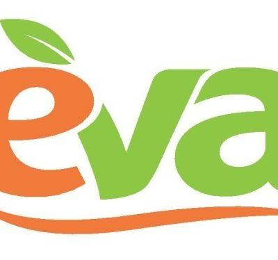 Перевалили за миллиард: EVA отчиталась о финпоказателях за 1-й квартал 2016-го