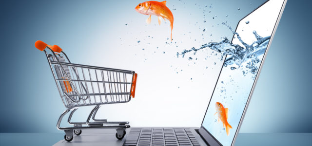 Обзор рынка e-commerce Украины в 2015 году (+инфографика)