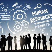 Исследование Deloitte: ключевые HR-тренды в ближайшие годы
