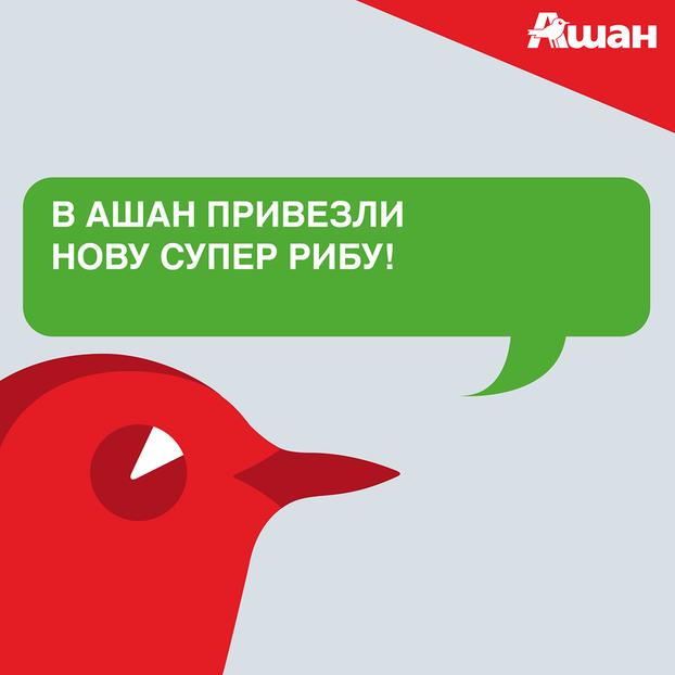 ashan_novus