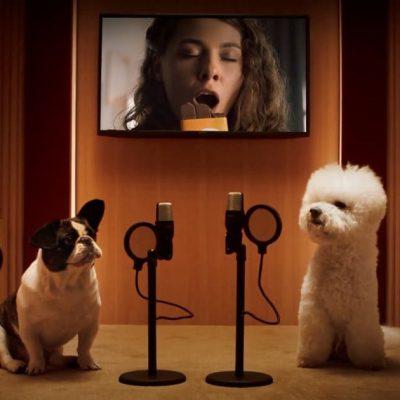 Реклама недели: Comfy, Фокстрот, Roshen, Glovo и Черная пятница
