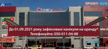 Как новому ТРЦ закрепиться на рынке в эпоху пандемии – опыт Cherry Mall